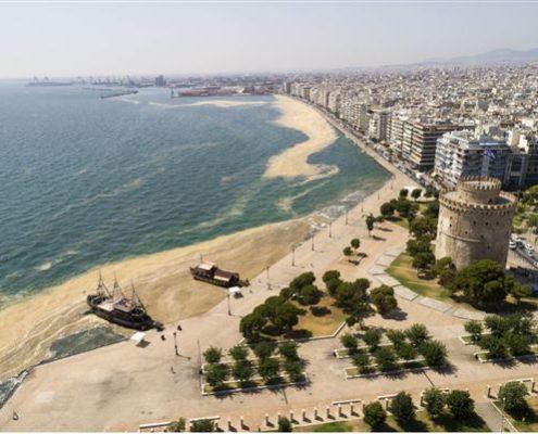 φυτοπλαγκτόν θερμαϊκός θεσσαλονίκη