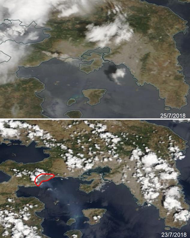 κινέτα πυρκαγιά αττική έκταση δορυφορική