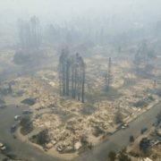 πυρκαγιές 2017 δάσος